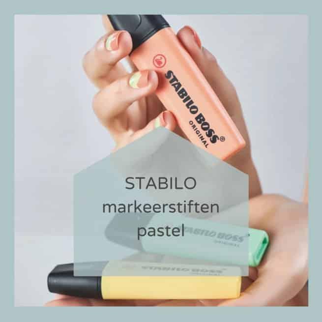 Pastel Markeerstiften Stabilo