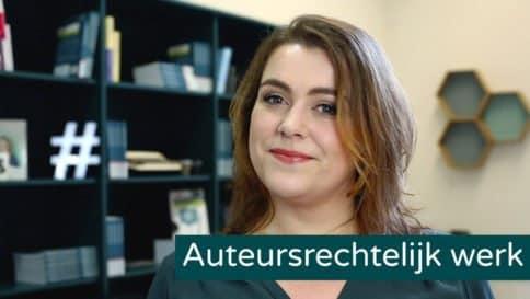 Auteursrecht werk