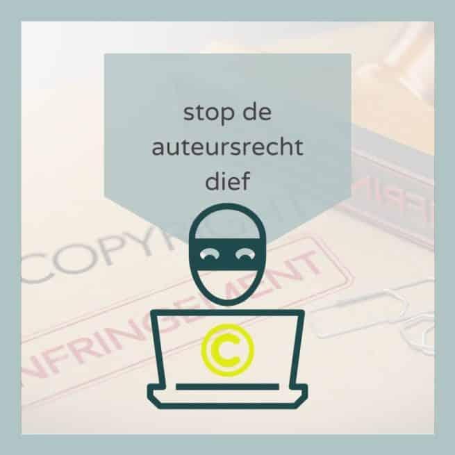 Zet de auteursrechtdief betaald